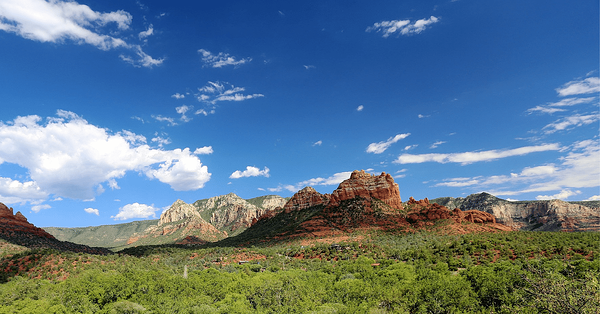 Coconino Forest_Best Arizona Road Trips To Take This Fall_Hochuli