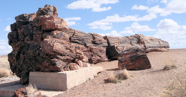 Petrified Forest_Best Arizona Road Trips To Take This Fall_Hochuli
