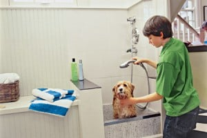 laundry room pet washing station remodel contractor scottsdale, az